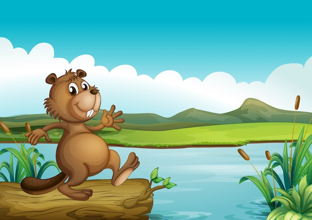 Un castor au-dessus d'un bois flottant