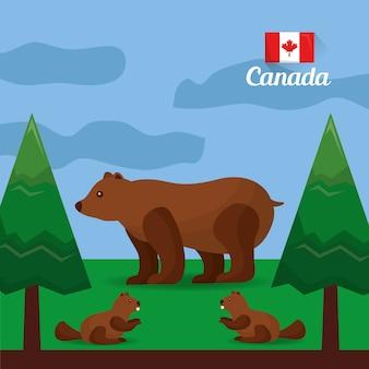 Castors d'ours canadiens dans la forêt naturelle