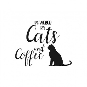 Cat citation lettrage typographie
