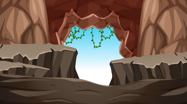 Cave avec une entrée