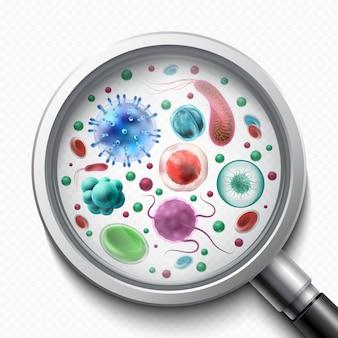 Cellules bactériennes, microorganismes, virus et germes