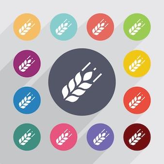Cercle de l'agriculture, jeu d'icônes plat. boutons colorés ronds. vecteur