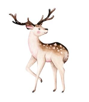 Cerf aquarelle de noël. illustration d'animaux mignons de forêt de fauve de noël d'enfants