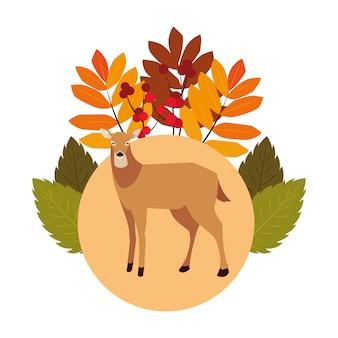 Cerf heureux saison d'automne plat