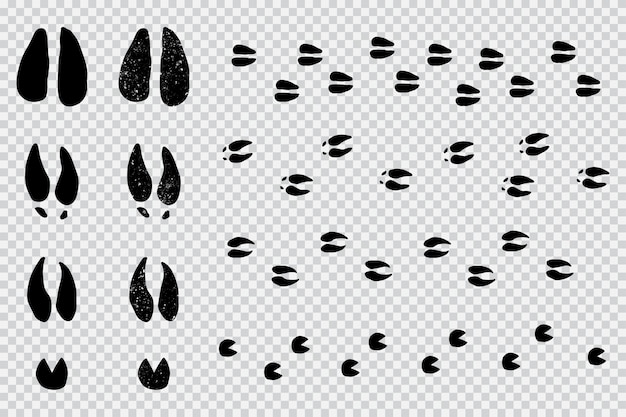 Le cerf et l'orignal suivent l'empreinte des animaux silhouette noire sur un fond transparent.