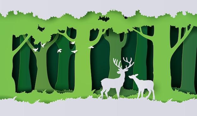 Des cerfs dans la forêt.