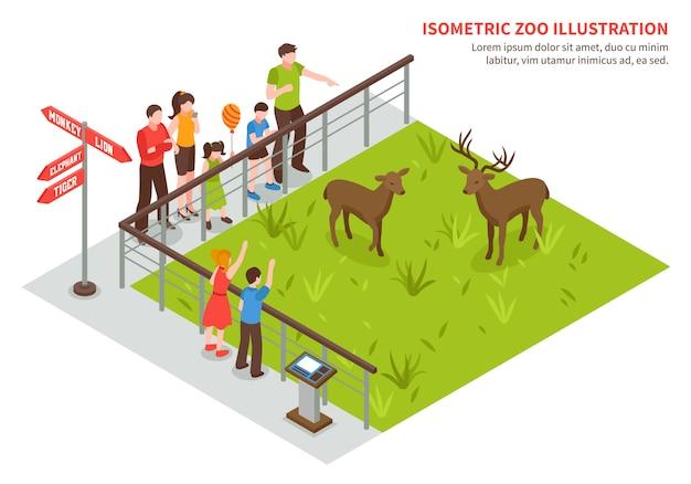 Cerfs, dans, zoo, composition