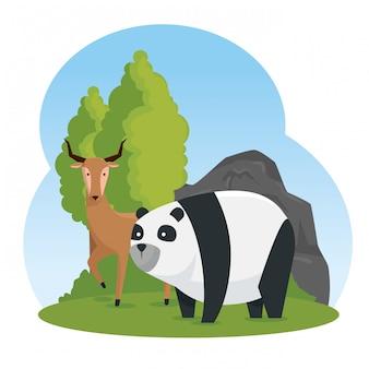 Cerfs et pandas animaux sauvages avec des arbres