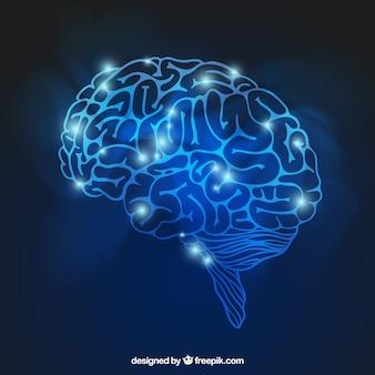 Cerveau brillant