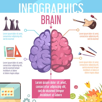 Cerveau humain hémisphères cérébraux gauche et droit fonctions infographie cartoon rétro éducation apprentissage aide affiche illustration vectorielle