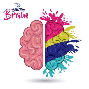 Le cerveau incroyable isolé vector illustration design