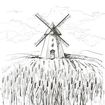 Champ de blé et moulin
