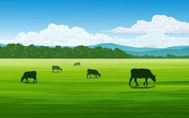 Champ en journée ensoleillée avec des vaches qui paissent
