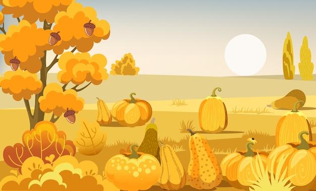Champ thématique d'automne avec des citrouilles