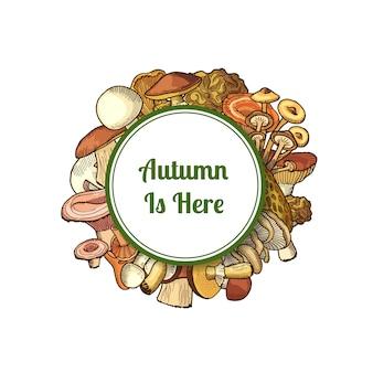 Champignon champignons avec texte l'automne est arrivé