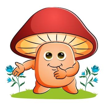 Le champignon montre et présente de l'illustration