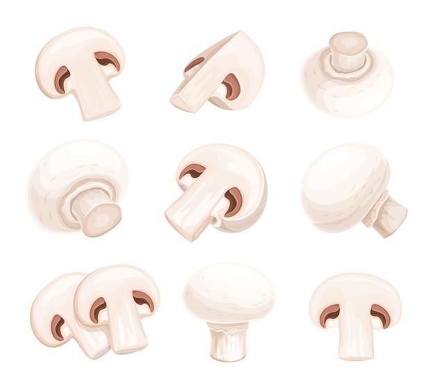 Champignons champignon entiers et coupés isolés
