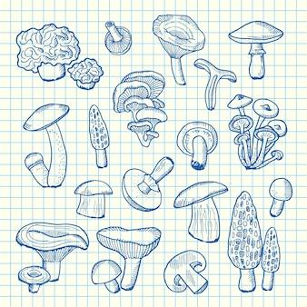 Champignons dessinés à la main sur la feuille de cellules