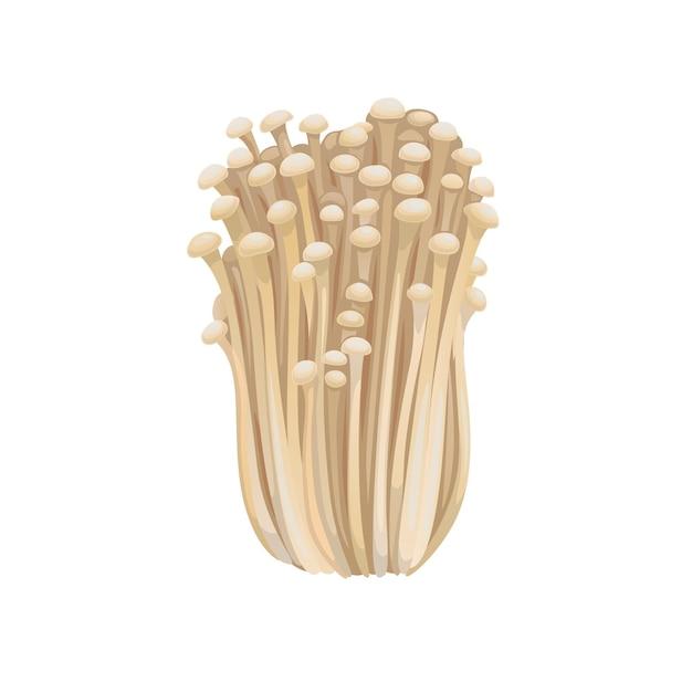 Champignons enoki isolés crus enokitaki à l'aiguille d'or
