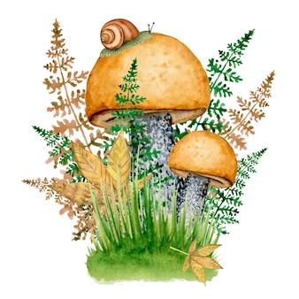Champignons forestiers avec escargot en automne verdure aquarelle illustration d'automne.
