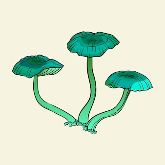 Champignons vénéneux menaçants. illustration vectorielle dessinés à la main isolée sur fond.