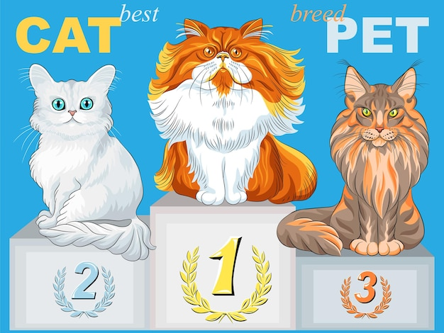 Champion de chat pelucheux mignon de vecteur sur le podium