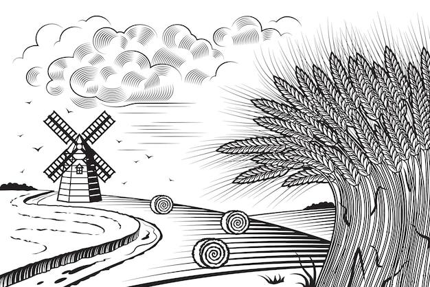 Champs de blé paysage noir et blanc