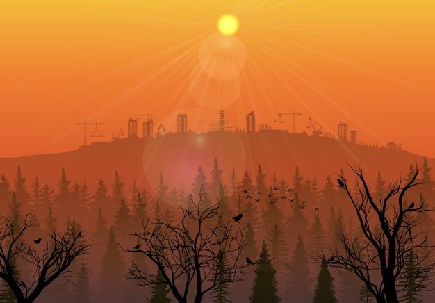 Chantier de construction sur les collines au coucher du soleil