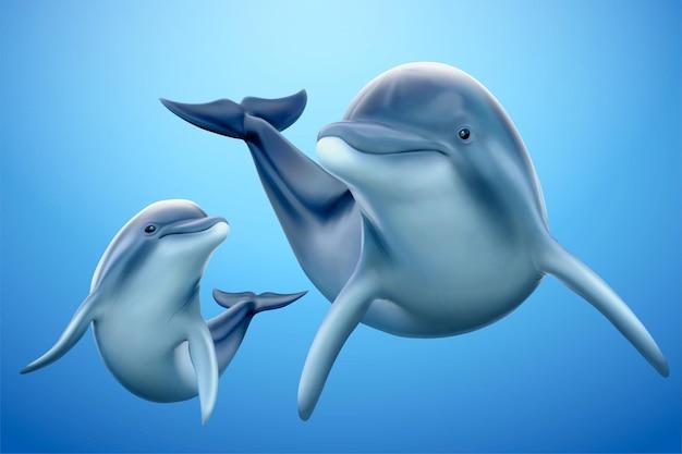Charmante famille de dauphins