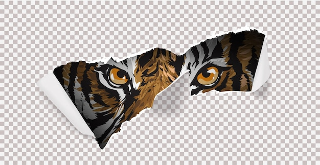 Chasse sauvage avec tigre et griffe marque illustration.