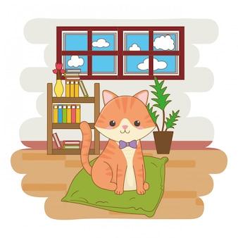 Chat assis sur un coussin à l'intérieur de la maison