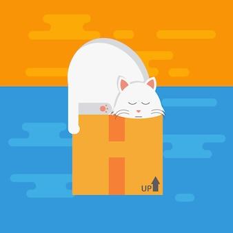 Chat blanc qui dort sur la boîte