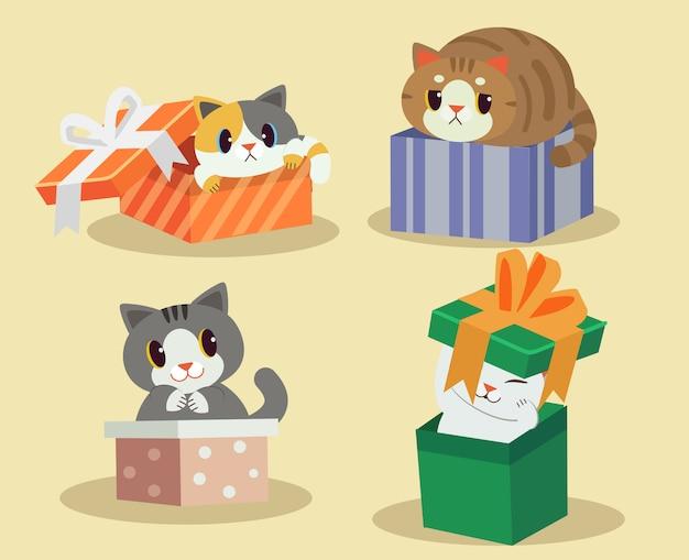 Chat dans la boite cadeau
