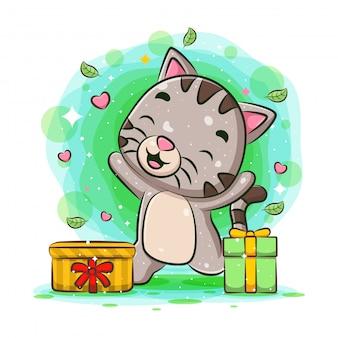 Chat drôle obtenir deux cadeaux