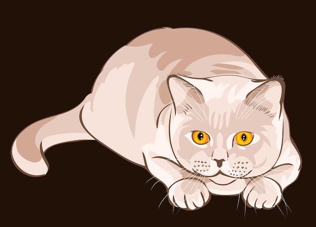 Le chat lilas à poil court britannique est en embuscade