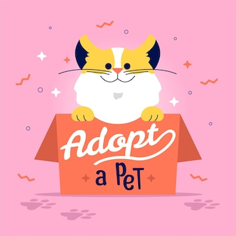Chat mignon à adopter