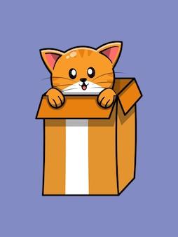 Chat mignon en boîte