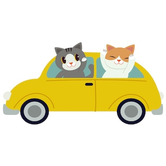 Le chat mignon de caractère conduisant une voiture jaune. le chat conduit une voiture jaune sur fond blanc.
