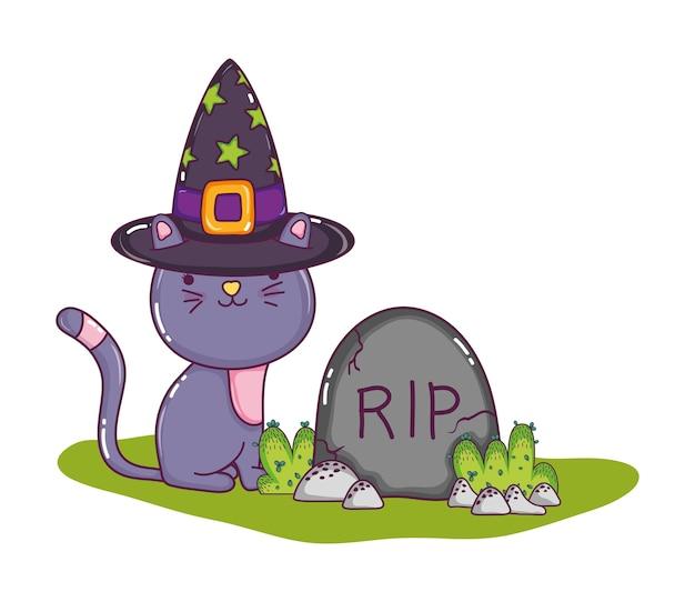 Chat mignon avec chapeau et pierre de déchirure