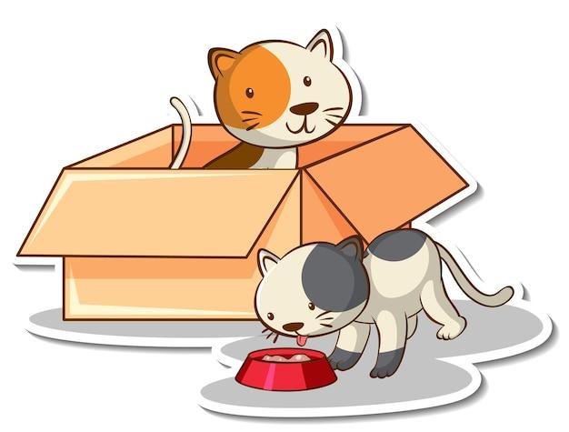 Chat mignon dans l'autocollant de la boîte