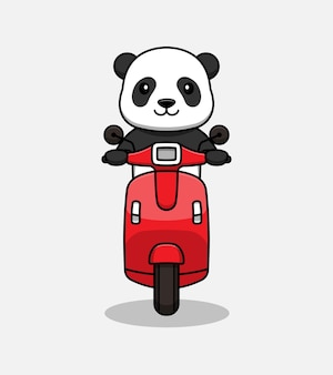 Chat panda mignon chevauchant un scooter