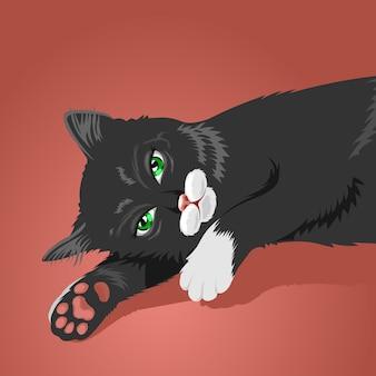 Chat paresseux