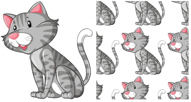 Chat sans couture isolé sur blanc