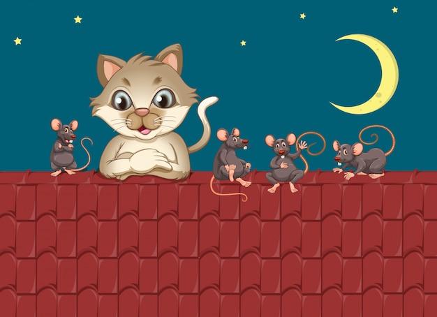 Chat une souris sur le toit