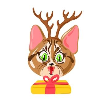 Chat surpris avec le présent concept de carte de noël funny christmas pet vector illustration