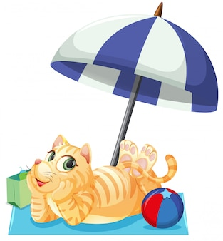 Un chat en vacances d'été