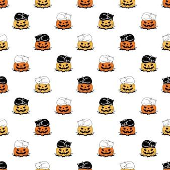 Chaton d'halloween citrouille transparente motif chat dormant