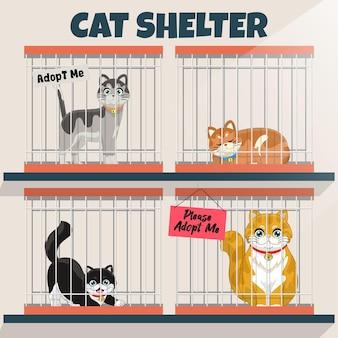 Chats en cage dans le refuge pour chats