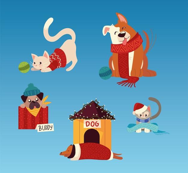 Chats de chiens mignons de noël avec des tenues d'hiver