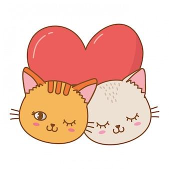Chats avec coeur